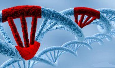 BRCA Positivo y TH