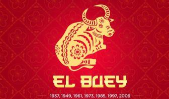 El Buey en el Horóscopo Chino