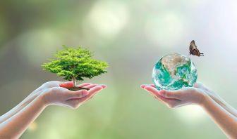 Importancia de la Biodiversidad y su Cuidado