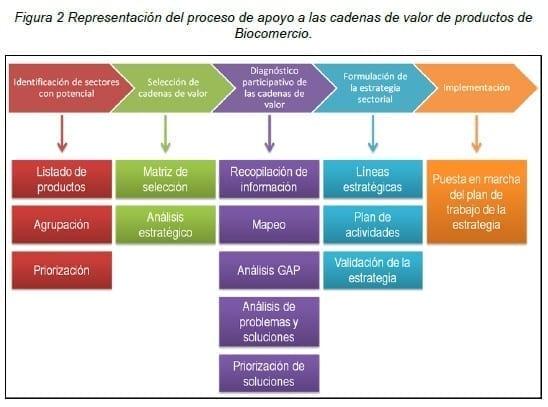 Cadenas de valor de productos de Biocomercio