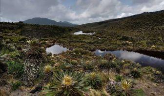 Delimitación de Ecosistemas de Páramos