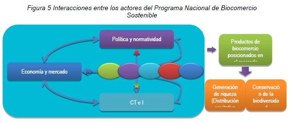Interacciones entre los actores del Programa Nacional de Biocomercio Sostenible