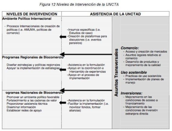 Niveles de Intervención de la UNCTA