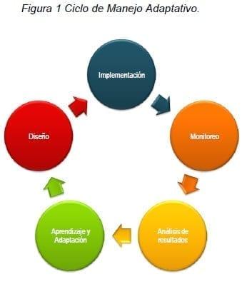 Enfoques de Biocomercio - Ciclo de Manejo Adaptativo
