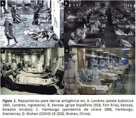 Cuatro momentos históricos para las enfermedades de masas