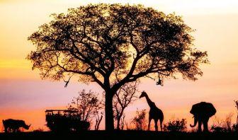 Geografía en África
