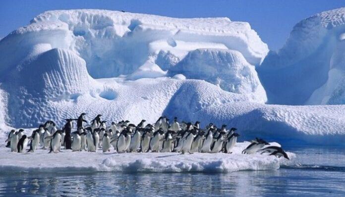 Geografía en la Antártida