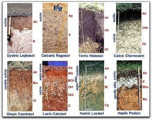 Tipos-de-suelos
