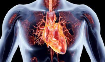 Guía del Síndrome Coronario Agudo