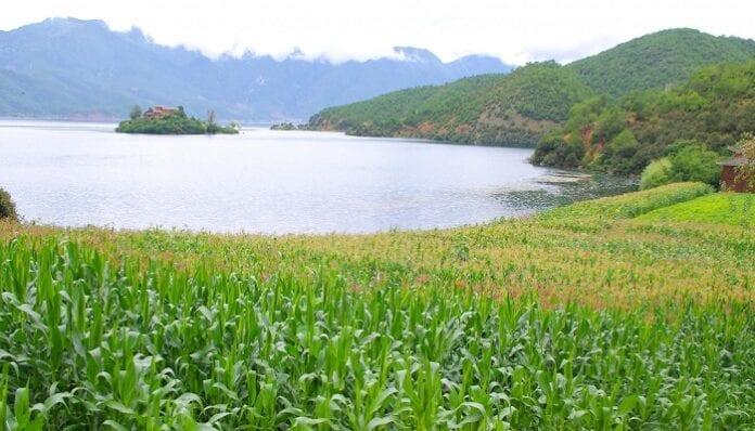 Manejo del Recurso Tierra y Agua