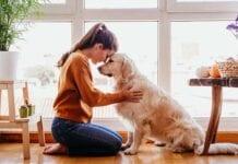 Proteger la Mascota del Coronavirus