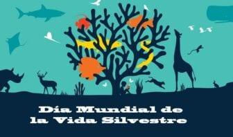 Vida Silvestre o Salvaje