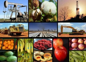 actividades economicas caracteristicas