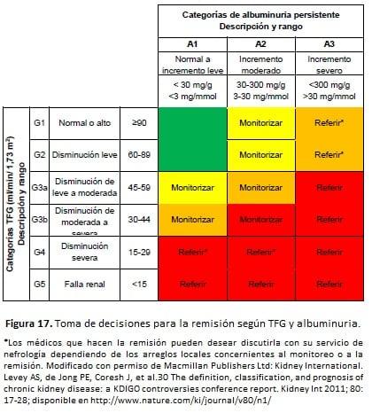 TFG y de la albuminuria para reflejar el riesgo de progresión por intensidad de color