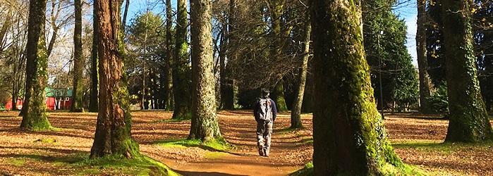 Parque Santa Inés en Valdivia