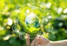Sustentabilidad en ecología