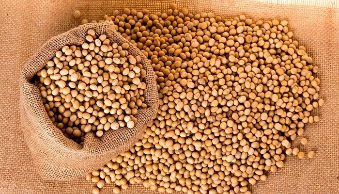 Beneficios de la Semilla de Soja