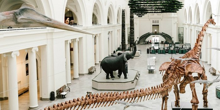 Field Museum of Natural History, en Chicago