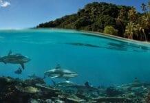 Geografía de Fiyi