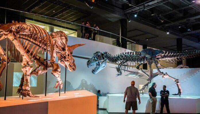 Mejores Museos para Visitar en Estados Unidos