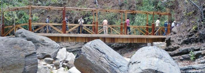 Puyango Bosque Petrificado