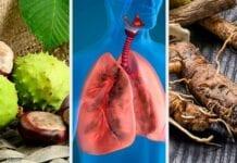 Remedios caseros tuberculosis