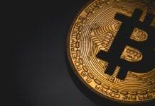 Bitcoin Champion, Inversiones Diferentes