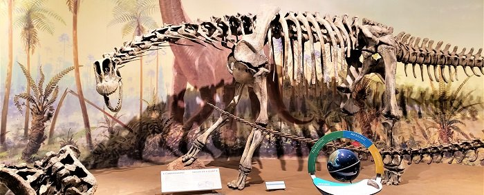 Museo de Paleontología Royal Tyrrell