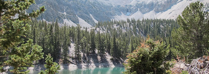 Parque Nacional Great Basin en Nevada