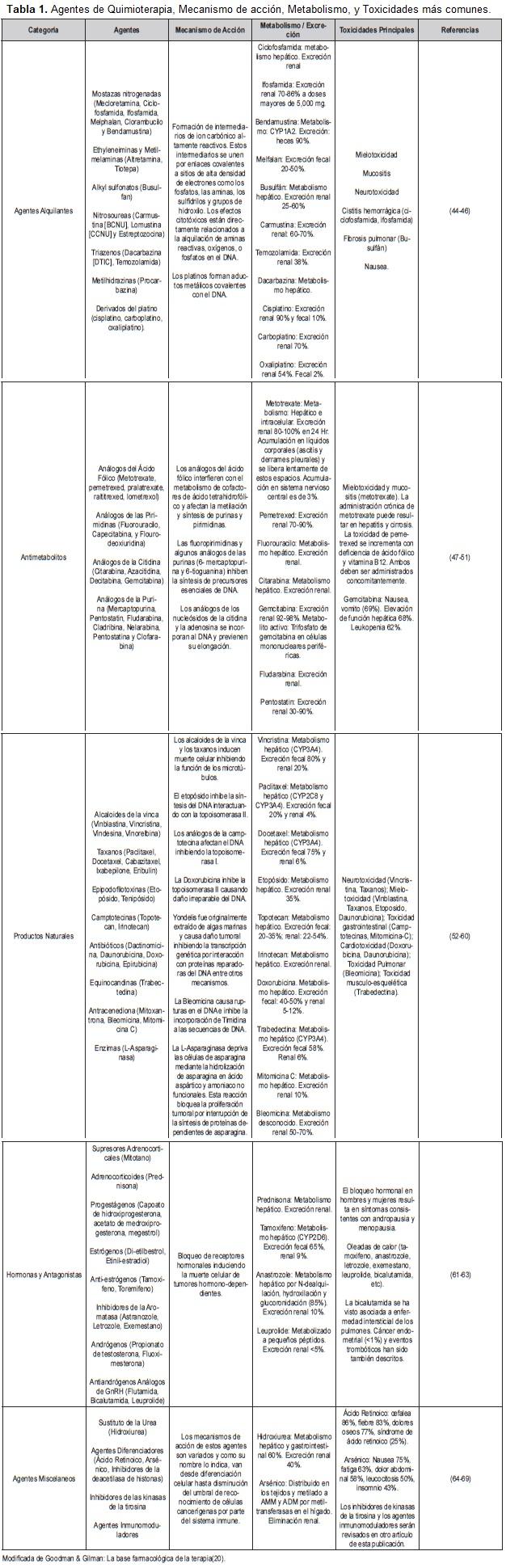 Agentes de Quimioterapia, Mecanismo de acción, Metabolismo, y Toxicidades más comunes.