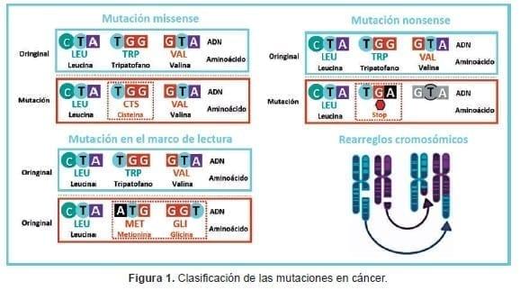 Clasificación de las mutaciones en cáncer