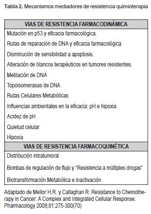 Mecanismos mediadores de resistencia quimioterapia