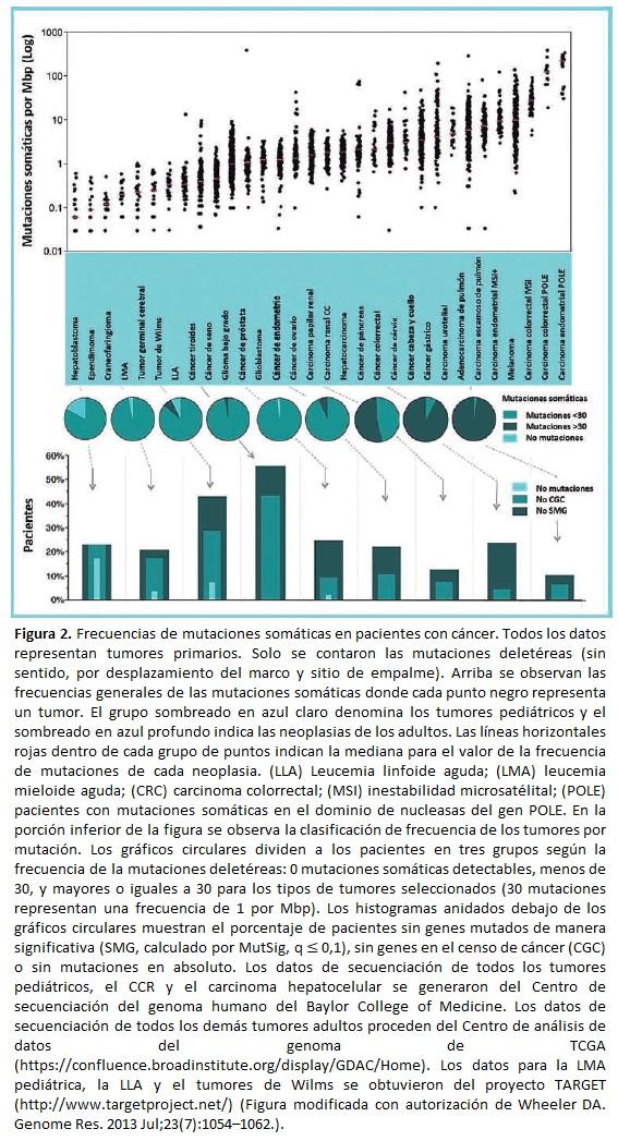 Frecuencias de mutaciones somáticas en pacientes con cáncer