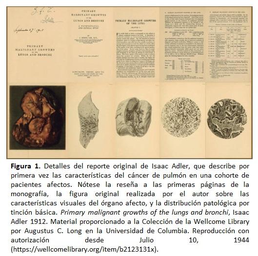 Cáncer de Pulmon, Detalles del reporte original de Isaac Adler
