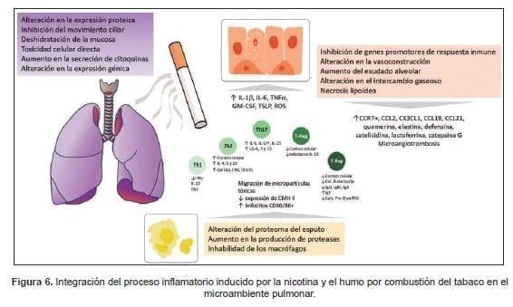 Inflamación crónica generada por tabaco a nivel pulmonar