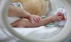 Recién Nacido: Sepsis Neonatal Temprana