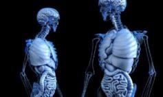 Humanismo y Medicina