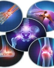 Ortopedia. 02 No. 2
