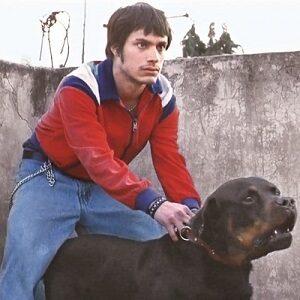 Gael García Bernal amores perros