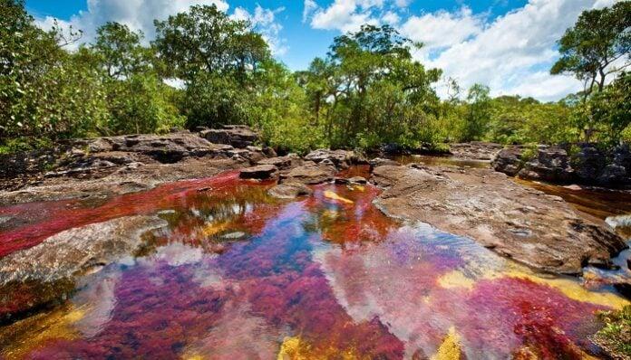 Parques Naturales en Colombia