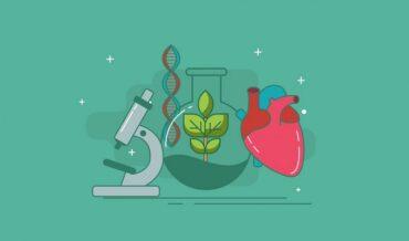 Biología: Qué Es, Importancia, Tipos e Historia