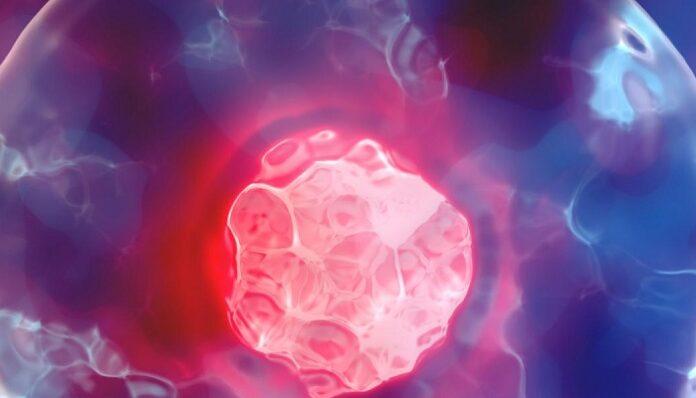 Célula y la Teoría Celular