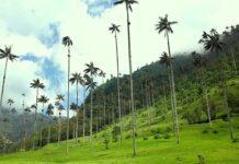 Climas en Colombia