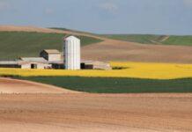 Cooperativa Agraria